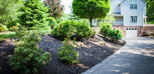 Complete Care Landscape Mulching