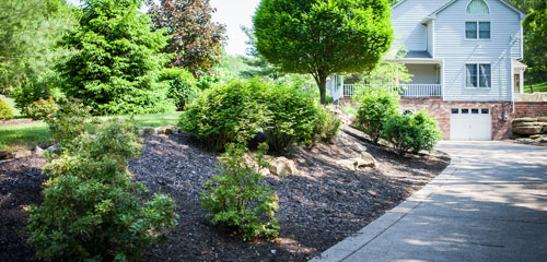 Beautiful Mulch Landscaping